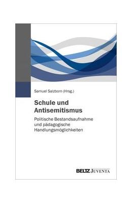 Abbildung von Salzborn | Schule und Antisemitismus | 2020 | Politische Bestandsaufnahme un...