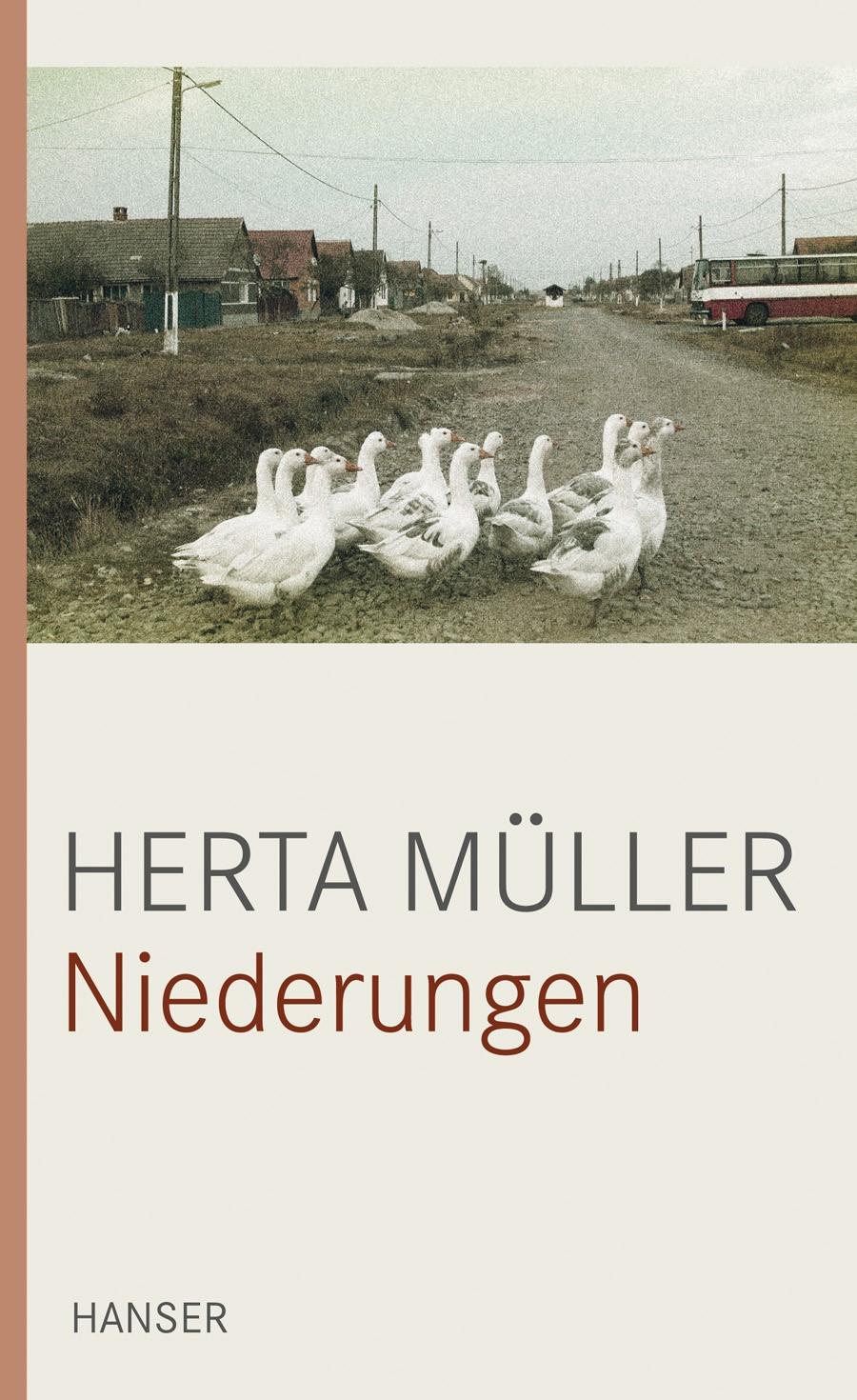 Niederungen | Müller, 2010 | Buch (Cover)