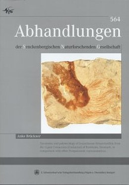 Abbildung von Brückner | Taxonomy and paleoecology of lyssacinosan Hexactinellida from the Upper Cretaceous (Coniacian) of Bornholm, Denmark, in comparison with other Postpaleozoic representatives | 2006 | 564