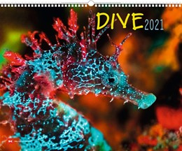 Abbildung von Dive 2021 | 1. Auflage | 2020 | beck-shop.de