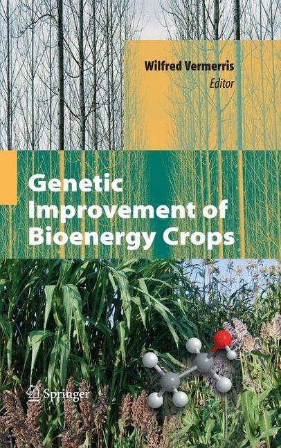 Abbildung von Vermerris | Genetic Improvement of Bioenergy Crops | 2008