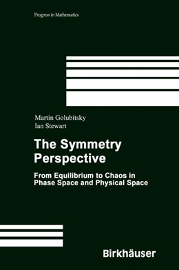 Abbildung von Golubitsky / Stewart | The Symmetry Perspective | 2002 | From Equilibrium to Chaos in P... | 200