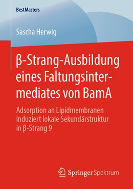 Abbildung von Herwig | ß-Strang-Ausbildung eines Faltungsintermediates von BamA | 2020 | Adsorption an Lipidmembranen i...