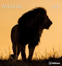 Abbildung von Wildlife 2021 - Foto-Kalender - Wildnis | 2020