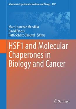 Abbildung von Mendillo / Pincus / Scherz-Shouval | HSF1 and Molecular Chaperones in Biology and Cancer | 1st ed. 2020 | 2020 | 1243