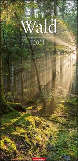 Abbildung von Weingarten   Im Wald - Kalender 2021   1. Auflage   2020   beck-shop.de