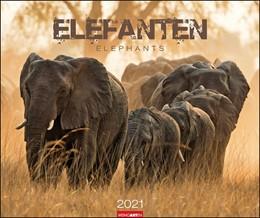 Abbildung von Weingarten | Elefanten - Kalender 2021 | 2020