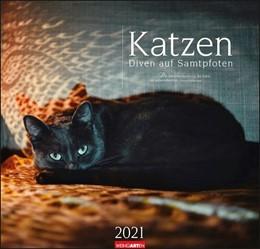 Abbildung von Weingarten | Katzen - Diven auf Samtpfoten - Kalender 2021 | 1. Auflage | 2020 | beck-shop.de