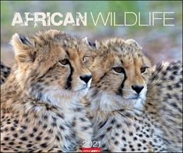 Abbildung von African Wildlife Kalender 2021   2020