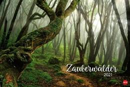 Abbildung von Zauberwälder 2021 | 2020