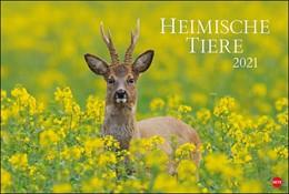 Abbildung von Heye | Heimische Tiere - Kalender 2021 | 2020