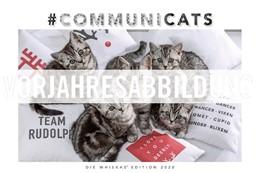 Abbildung von Whiskas Katzenkalender 2021 | 2020 | Jubileo!