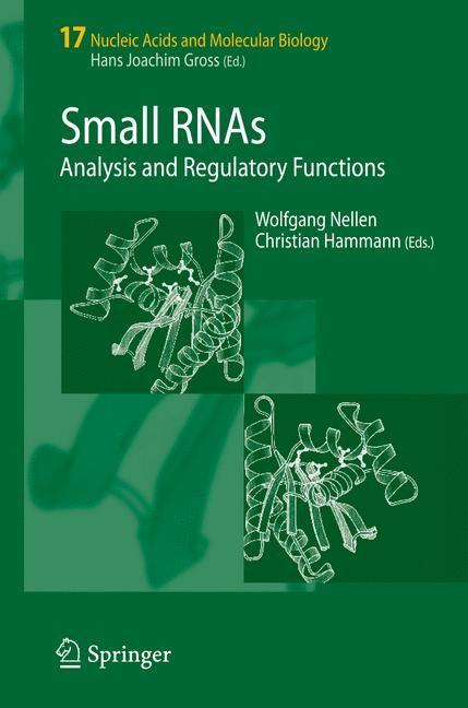 Abbildung von Nellen / Hammann   Small RNAs:   1st ed. 2005. 2nd printing   2007