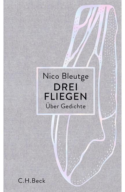Cover: Nico Bleutge, Drei Fliegen