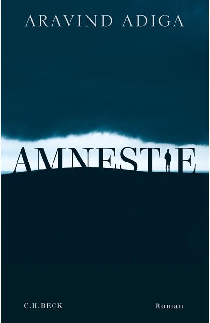 Cover: Aravind Adiga, Amnestie