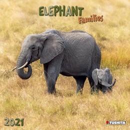 Abbildung von Elephant Families 2021 What a Wonderful World | 2020 | Elefanten-Familien