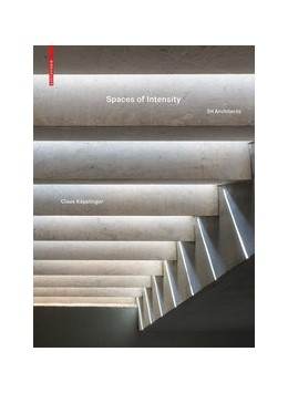 Abbildung von Spaces of Intensity   1. Auflage   2020   beck-shop.de