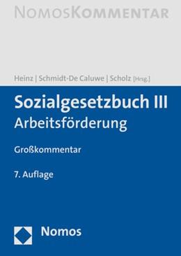 Abbildung von Heinz / Schmidt-De Caluwe | Sozialgesetzbuch III | 7. Auflage | 2021 | beck-shop.de