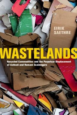 Abbildung von Saethre | Wastelands | 1. Auflage | 2020 | beck-shop.de