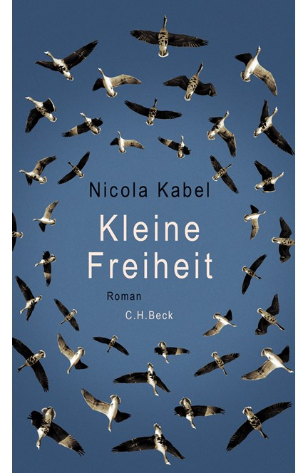 Cover: Nicola Kabel, Kleine Freiheit