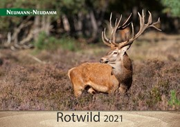 Abbildung von Rotwild 2021 | 1. Auflage | 2020 | beck-shop.de