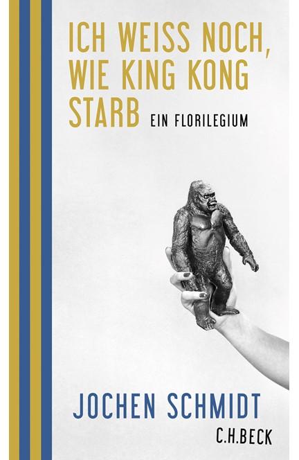 Cover: Jochen Schmidt, Ich weiß noch, wie King Kong starb