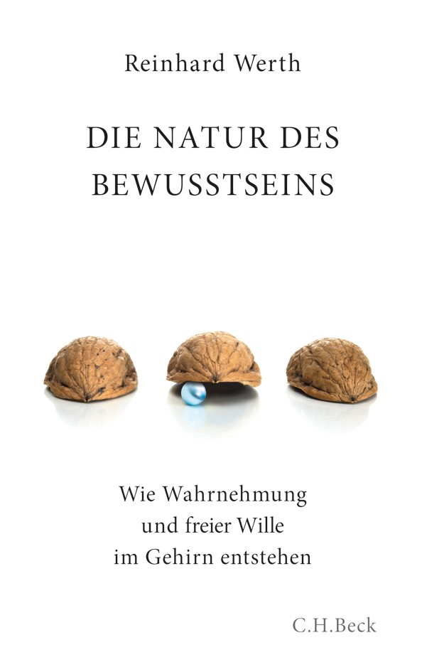 Abbildung von Werth, Reinhard | Die Natur des Bewusstseins | 2010