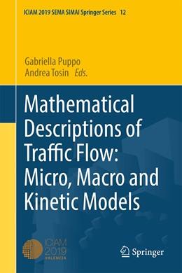 Abbildung von Puppo / Tosin | Mathematical Descriptions of Traffic Flow: Micro, Macro and Kinetic Models | 1. Auflage | 2021 | beck-shop.de
