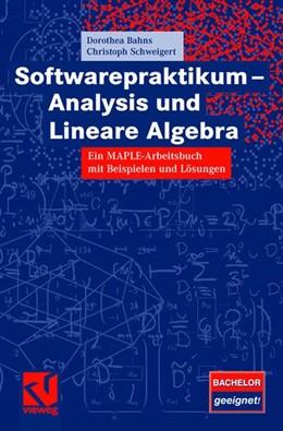 Abbildung von Bahns / Schweigert | Softwarepraktikum - Analysis und Lineare Algebra | 2007