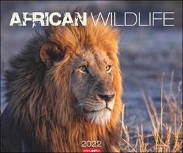 Abbildung von African Wildlife Kalender 2022   1. Auflage   2021   beck-shop.de