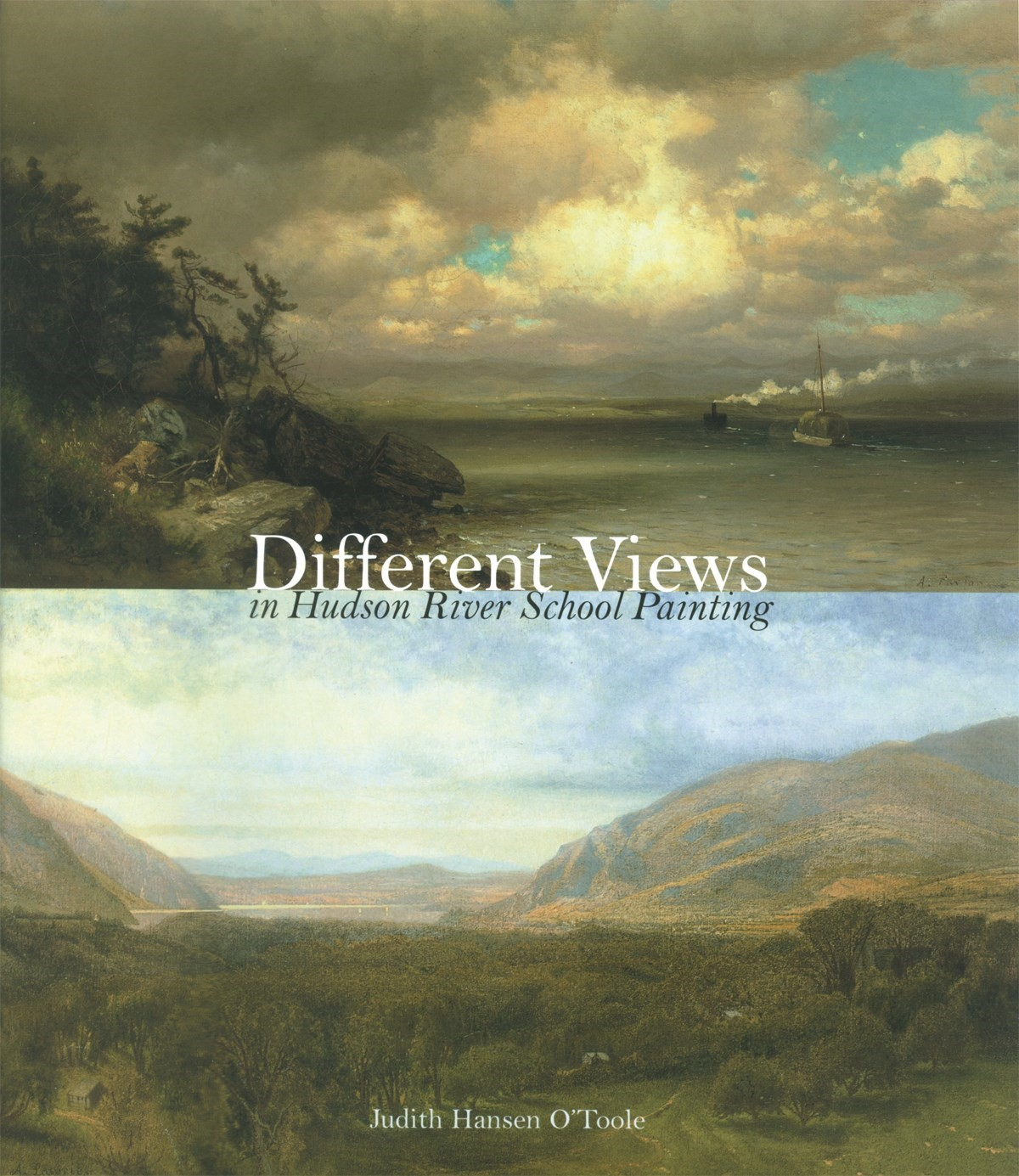 Abbildung von O'Toole | Different Views in Hudson River School Painting | 2008