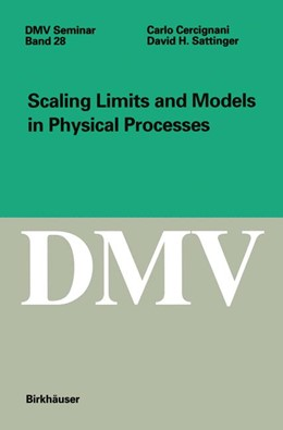 Abbildung von Cercignani / Sattinger | Scaling Limits and Models in Physical Processes | 1998 | 28