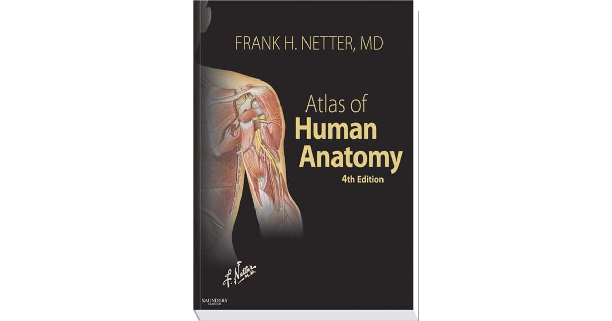 Atlas Of Human Anatomy Netter 4th Edition 2006 Buch Beck