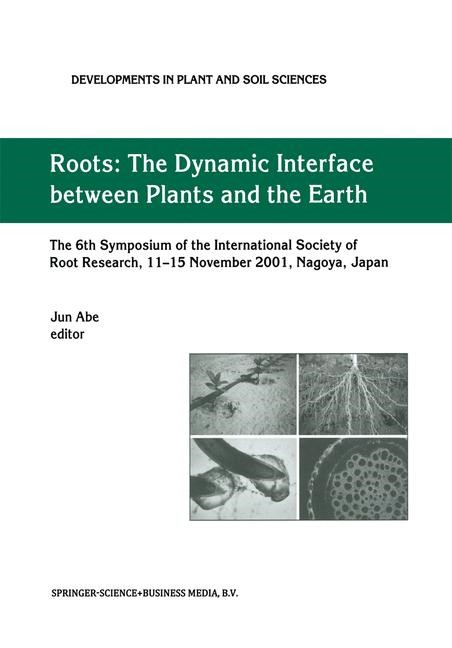 Roots | Abe | 1st Edition. Softcover version of original hardcover edition 2003, 2011 | Buch (Cover)