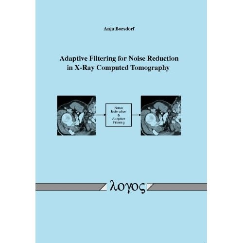 Adaptive Filtering for Noise Reduction in X-Ray Computed Tomography | Borsdorf, 2010 | Buch (Cover)