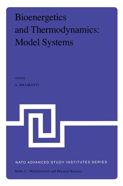 Bioenergetics and Thermodynamics: Model Systems | Braibanti, 1980 | Buch (Cover)