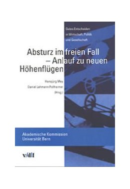 Abbildung von Mey / Lehmann Pollheimer | Absturz im freien Fall - Anlauf zu neuen Höhenflügen | 2001 | Gutes Entscheiden in Wirtschaf...