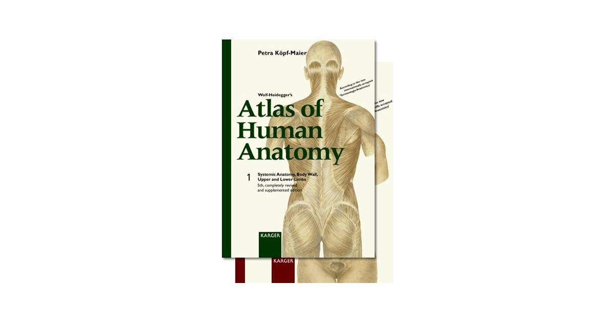 Wolf Heideggers Atlas Of Human Anatomy Complete Set Volume 1 And