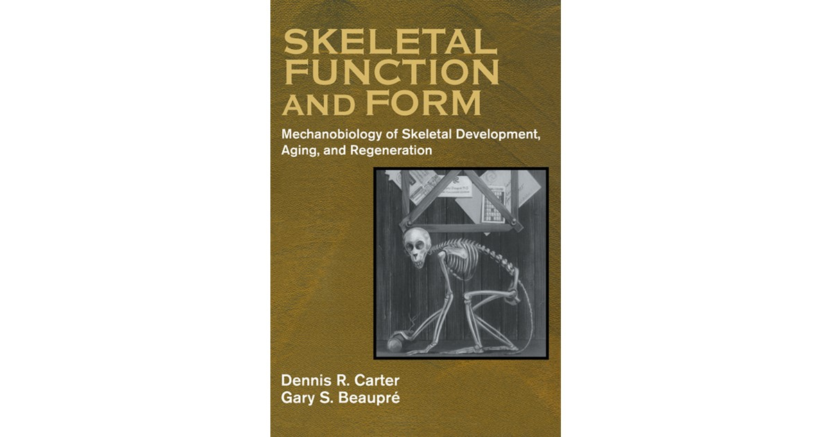 Skeletal Function And Form Carter Beaupr 2011 Buch Beck