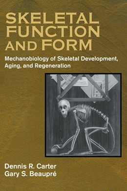 Abbildung von Carter / Beaupré | Skeletal Function and Form | 2000 | Mechanobiology of Skeletal Dev...
