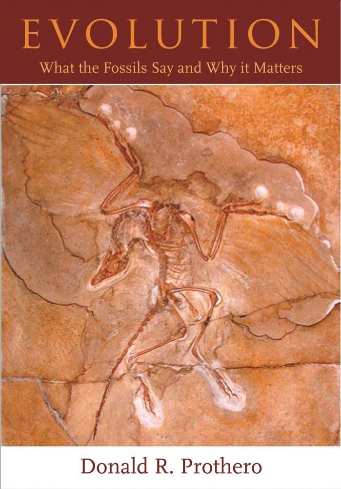 Abbildung von Prothero | Evolution | 2007