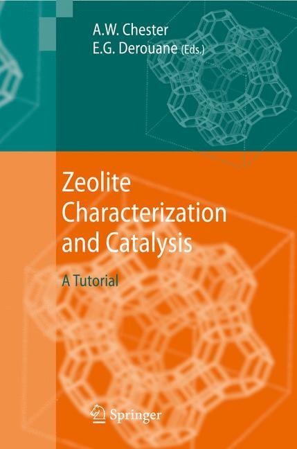 Abbildung von Chester / Derouane | Zeolite Characterization and Catalysis | 2009