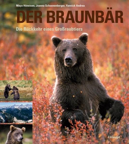 Abbildung von Höneisen / Schoenenberger / Andrea | Der Braunbär | 2009