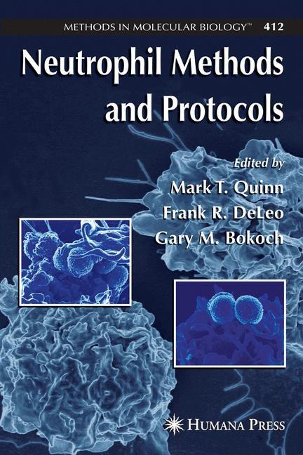 Abbildung von Quinn / DeLeo / Bokoch   Neutrophil Methods and Protocols   2007