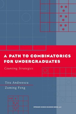 Abbildung von Andreescu / Feng | A Path to Combinatorics for Undergraduates | 2003 | Counting Strategies