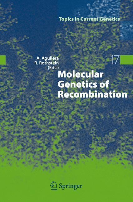 Abbildung von Aguilera / Rothstein | Molecular Genetics of Recombination | 2007