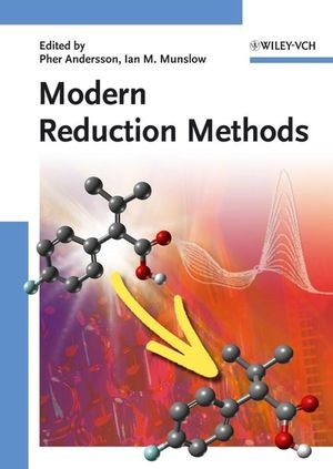 Abbildung von Andersson / Munslow | Modern Reduction Methods | 2008