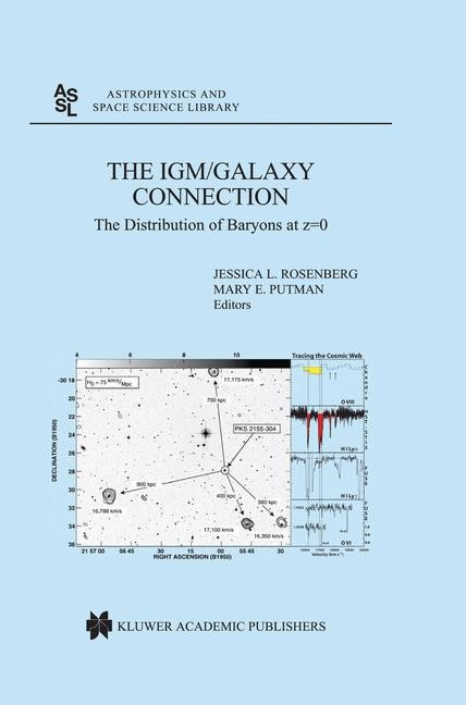 Abbildung von Rosenberg / Putman | The IGM/Galaxy Connection | 2003