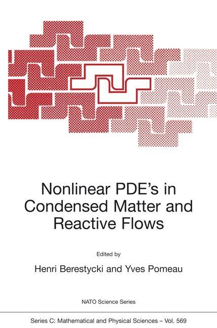 Abbildung von Berestycki / Pomeau | Nonlinear PDE's in Condensed Matter and Reactive Flows | 2002 | 2002