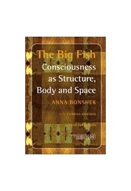 Abbildung von The Big Fish | 2007 | Consciousness as Structure, Bo... | 6